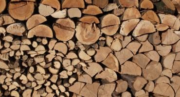 Milieuvoordelen van hout